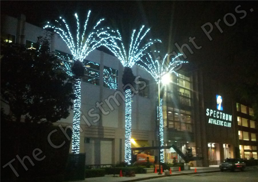 Commercial_50__Palm_Flair_Cool_White_LED_5mm_conical